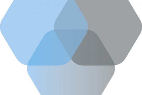 Logo: Betaalvereniging